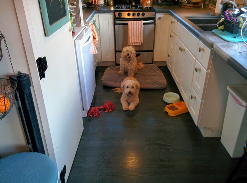 What To Do If You Have Pets In A Tiny House? | Tiny House Basics Tiny Houses Pets on best pigs for pets, small mammal pets, dwarf mice as pets, tiny houses on wheels, alot of pets, tiny houseon wheels floor plans, tiny home, tiny dogs, animal pets, strange but cute pets, small chameleon pets, home pets, tiny food, tiny cats, california pets, best cats for pets, australia pets, small pigs as pets,